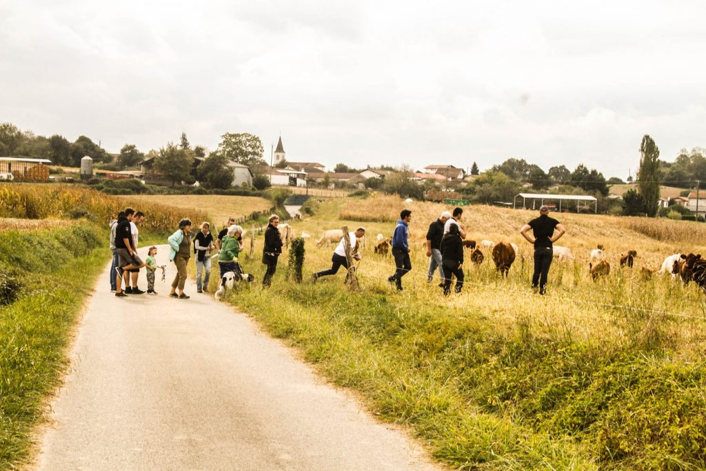 La route de l'agroforesterie avec AFTER