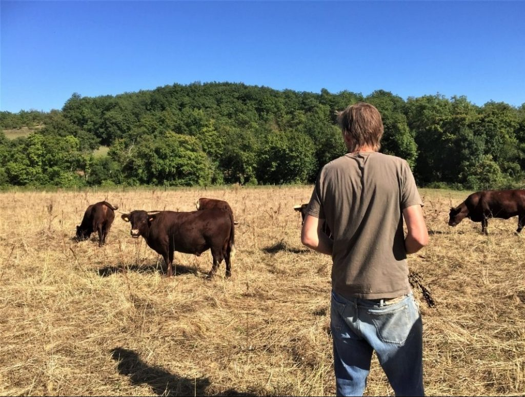 Andrew Coecup - agroforesterie dans le gers